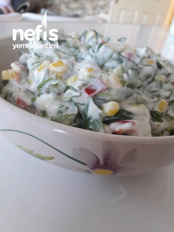 Renkli Semizotu Salatasi