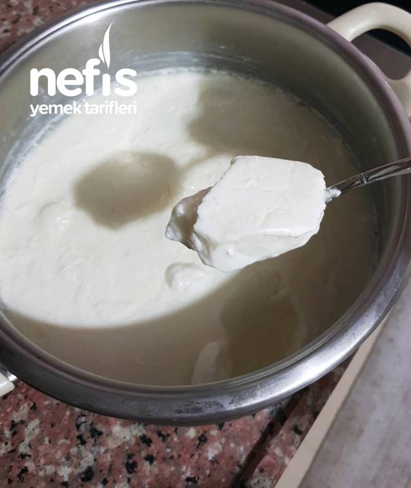 Doğal Yoğurt-kolay Ve Aşamalı