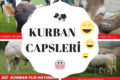 Nefis Türkmen Pilavı Tarifi