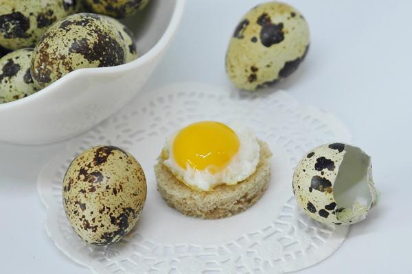 bıldırcın yumurta besin değeri