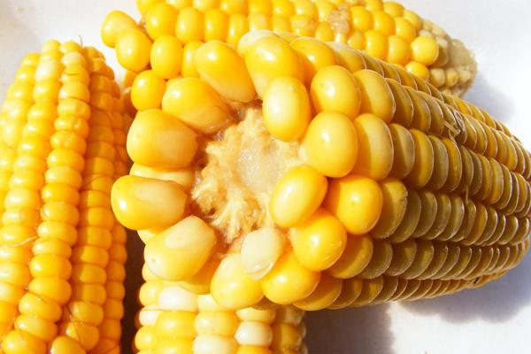 1 adet haşlanmış mısır kaç kalori