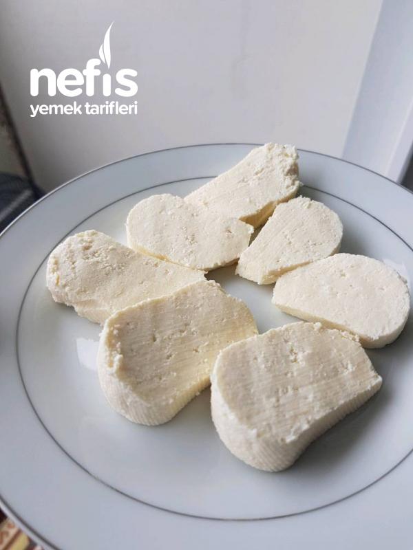 Evde Mayasiz Beyaz Peynir