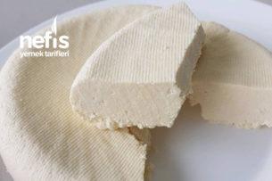 Evde Mayasız Beyaz Peynir Tarifi