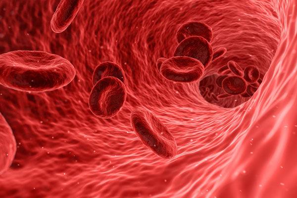 Trombosit Nedir? Düşüklüğü ve Yüksekliği Nedenleri, Tedavisi Tarifi