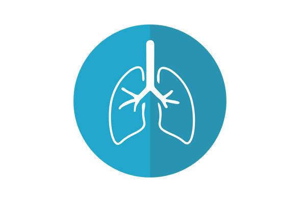 Akciğer Detoksu Nasıl Yapılır? Akciğeri Temizleyen Doğal Yöntemler