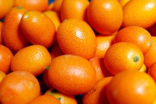 Kamkat Meyvesi Nerelerde Yetişir? Faydaları Nelerdir? Tarifi