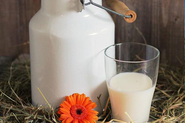 Keçi Sütü Faydaları: Anne Sütüne En Yakın Besin Deposu Tarifi