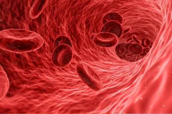 kan pıhtılaşması neden oluşur