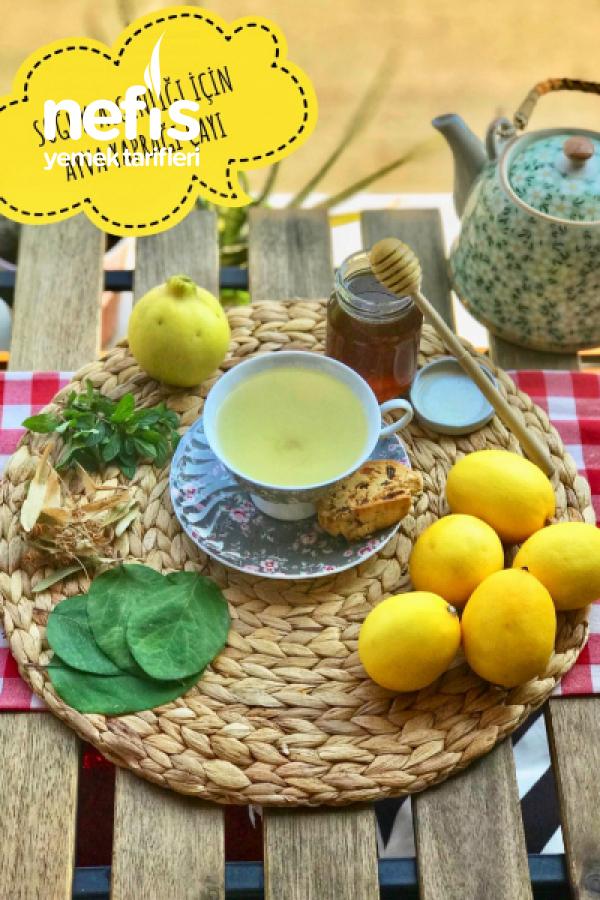 Soğuk Algınlığı İçin Ayva Yaprağı Çayı