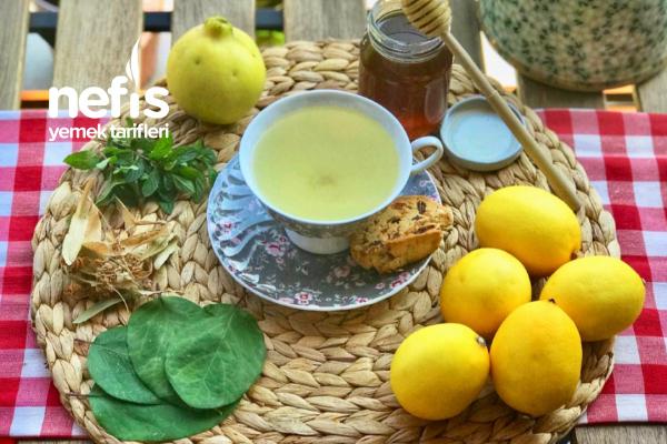 Soğuk Algınlığı İçin Ayva Yaprağı Çayı Tarifi