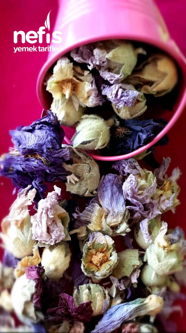 Hatmi Çiçeği Çayı (Öksürük Kesen)
