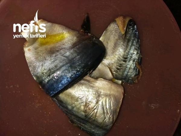 Fırında Soslu Palamut Balığı