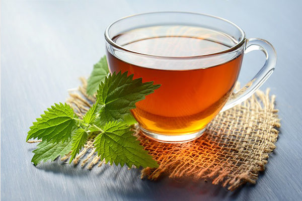 Isırgan Otu Çayı Nasıl Yapılır? Faydaları Nelerdir? Zayıflatır Mı?