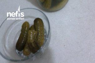 Kıtır salatalık Turşu Tarifi