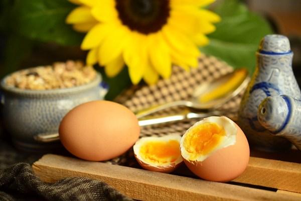 tavuk yumurtası faydaları