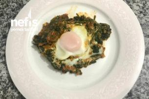 Yumurtalı Ispanak Yemeği Tarifi