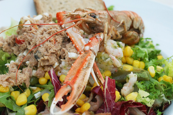 ton balığı salatası kaç kalori