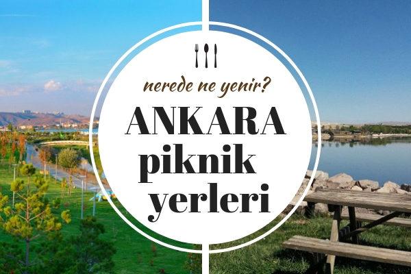 Ankara Piknik Alanları – Aileye Uygun Doğayla İç İçe 10 Temiz Yer Tarifi