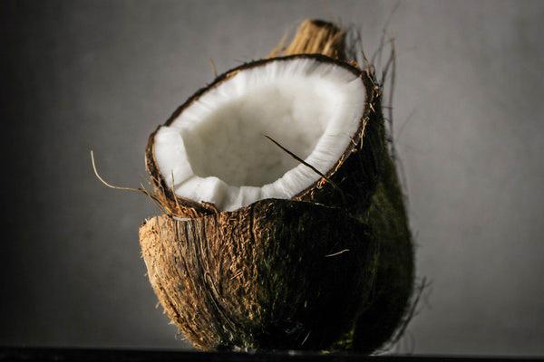 hindistan cevizi sütü yapımı