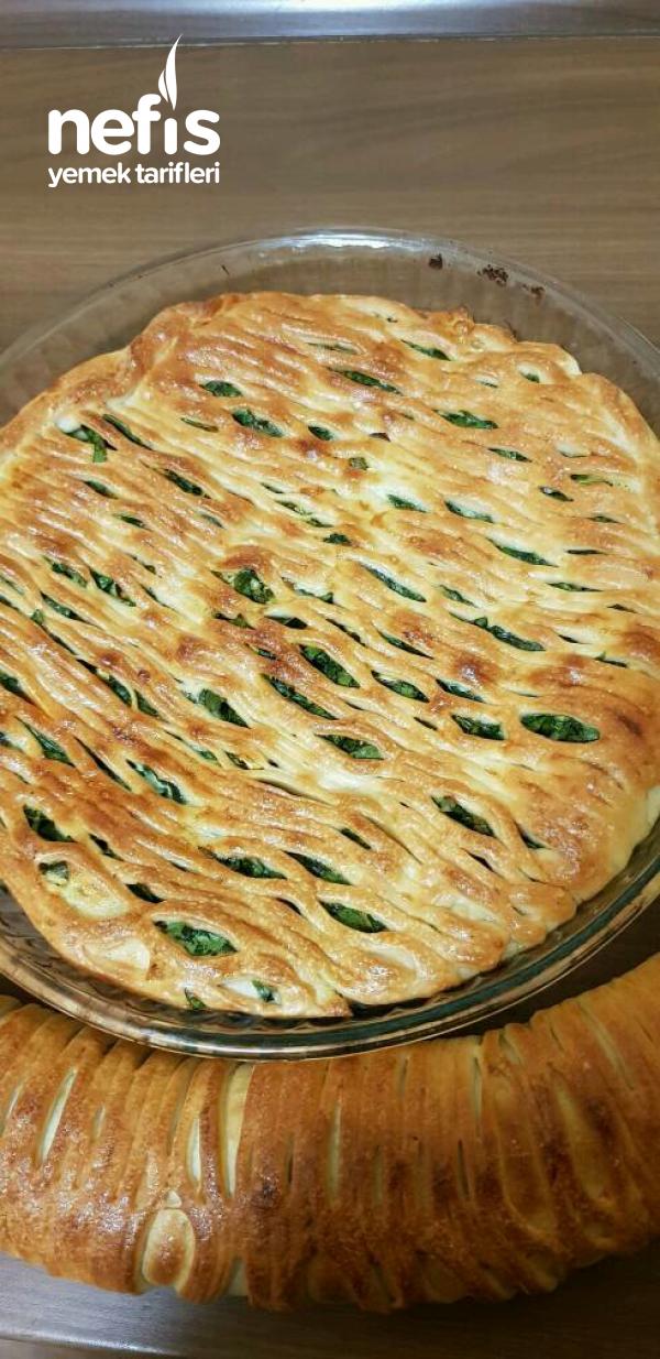Ispanaklı Tart ve Rulo Börek