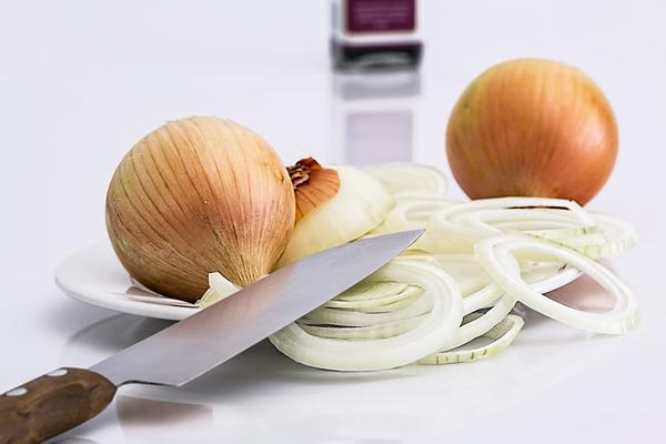 soğan halkası kaç kalori