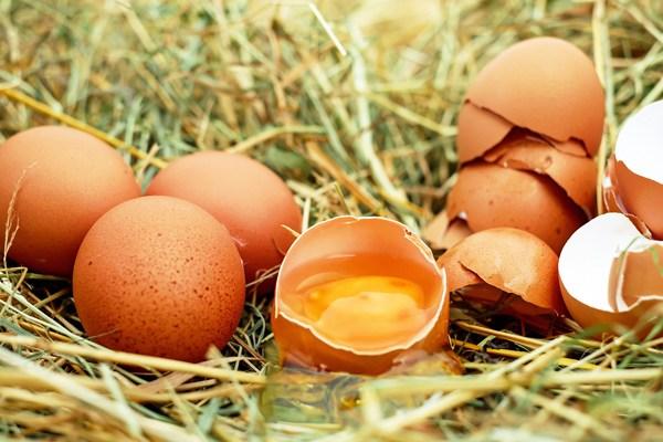 yaş maya yumurta akı maskesi