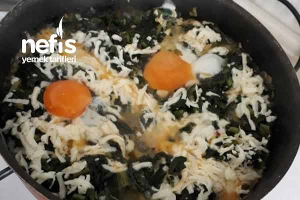 Kaşarlı Yumurtalı Ispanak Tarifi