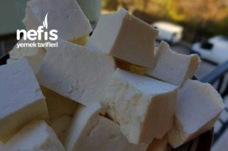 Antep Peyniri (Köy Peyniri) Doğal Denenmeli Tarifi