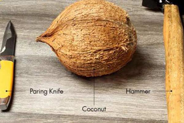 hindistan cevizi nasıl kırılır