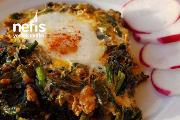 Teremyağlı Kıymalı Yumurtalı Ispanak Tarifi