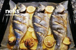 Teremyağ İle Fırında Çupra Balık Tarifi