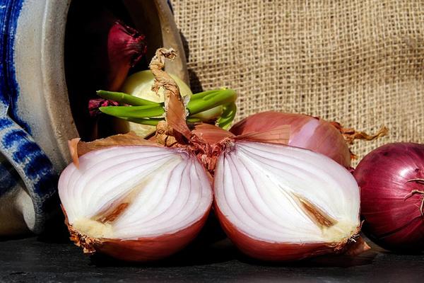 soğan kabuğunun faydaları