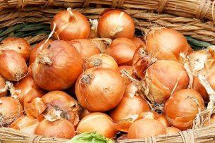 soğan kabuğu faydaları