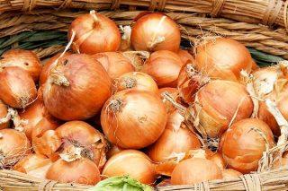 Soğan Kabuğu Faydaları – Yok Artık! Diyeceğiniz 10 Mucizevi Etkisi Tarifi