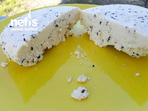 Fesleğenli Çörekotlu Ev Yapımı Peynir