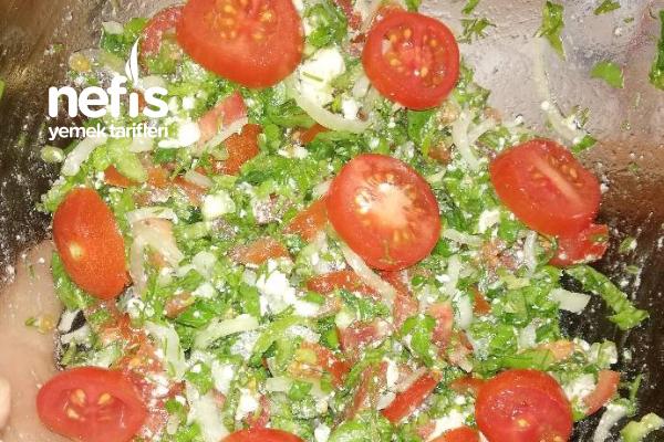 Nefis Diyet Salata Tarifi