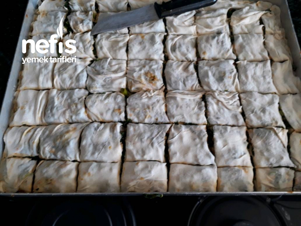 Teremyağlı Ispanak Böreği