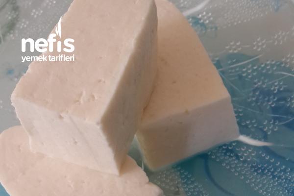Pratik Peynir Yapımı Tarifi