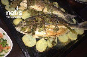 Fırında Kerevizli Balık Tarifi