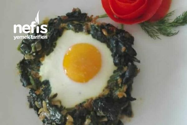Yumurtalı Ispanak Tarifi