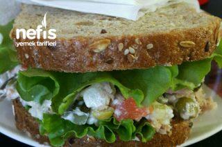 Ton Balıklı Leziz Sandviç Tarifi