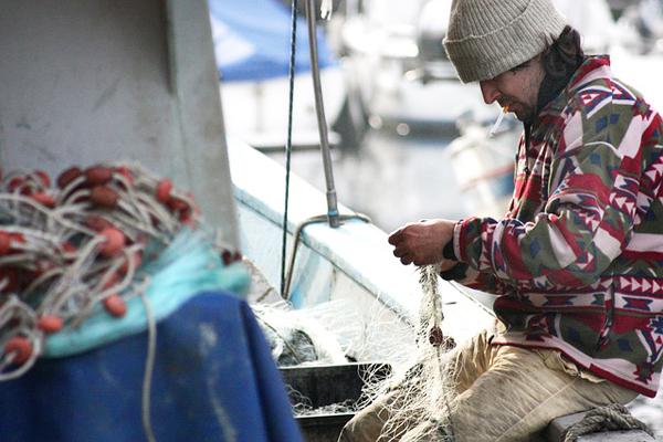 balık avı