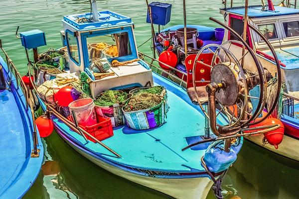 balık avı yasağı 2019
