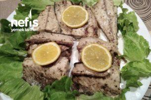Kokusuz Balık (uskumru) Tarifi