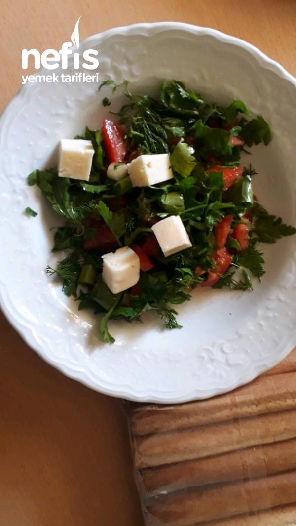 Salatarella
