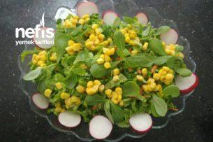 Semizotlu Bahar Salatası Tarifi