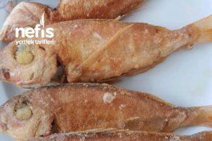 Mercan Balığı Tarifi