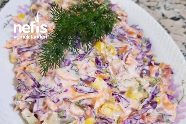Yoğurtlu Havuçlu Mor Lahana Salatası Tarifi