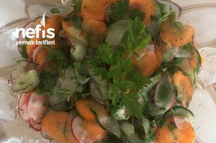 Sirke Soslu Havuç Salatalık Salatası Tarifi