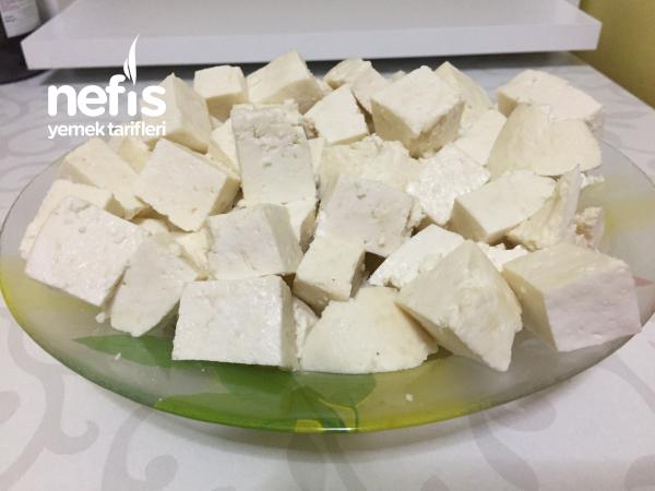 Yoğurt İle Peynir Yapımı